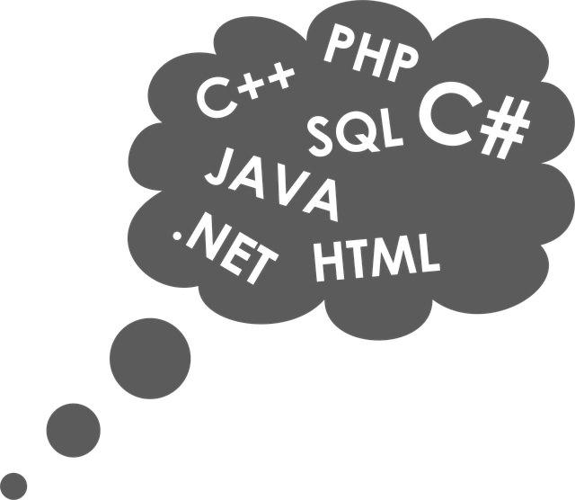 【初心者向け】独学でも習得できるおすすめプログラミング言語5選